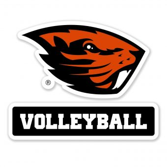 Beaver Volleyball - Decal